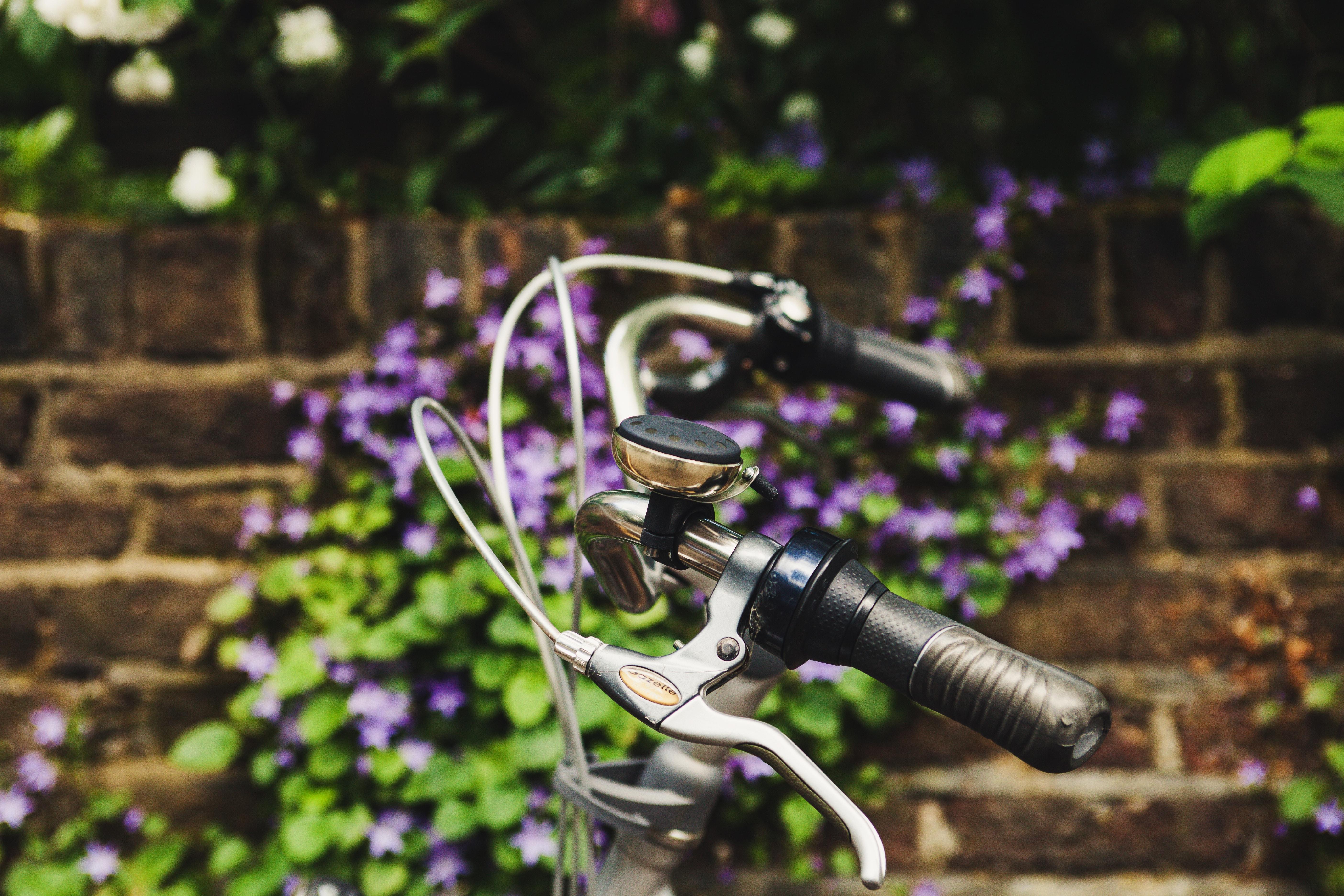 séjour linguistique angleterre londres vélo
