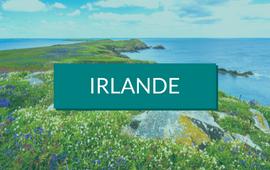 séjour linguistique irlande